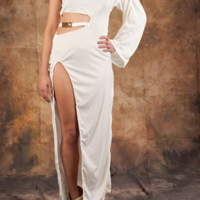 (sample sale) The Golden Life  Dress